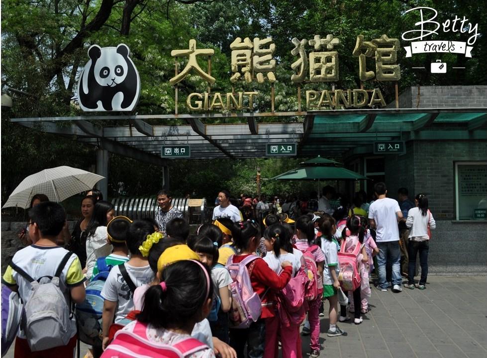 Chinese locals